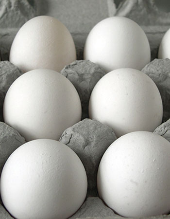 fresh-eggs-delivered
